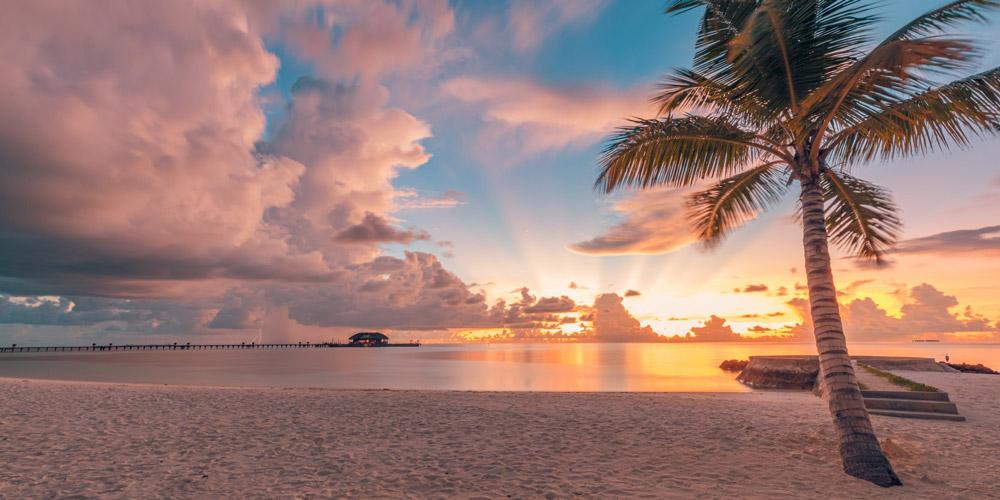 Maldives Holiday Specials